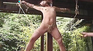 Amateur girl gets dominated during outdoor play